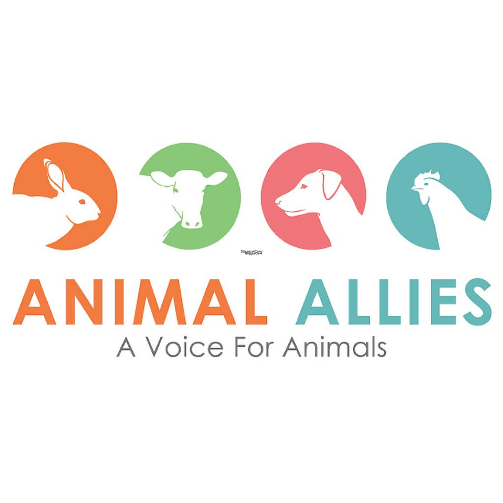 "Photo of Animal Allies Singapore  by <a href=""/members/profile/community5"">community5</a> <br/>Animal Allies <br/> March 7, 2017  - <a href='/contact/abuse/image/88246/233865'>Report</a>"