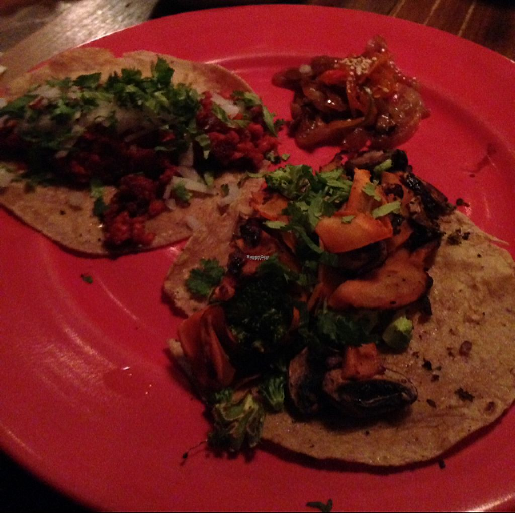 """Photo of Don Taco Tequila  by <a href=""""/members/profile/AliciaPiccolina"""">AliciaPiccolina</a> <br/>soy chorizo taco and grilled vegetable taco  <br/> April 4, 2017  - <a href='/contact/abuse/image/88272/244812'>Report</a>"""