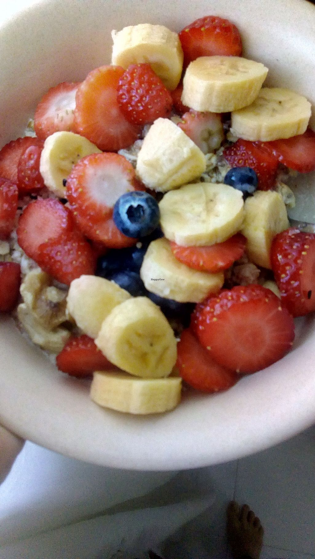 "Photo of U are Brilliant Homestay  by <a href=""/members/profile/u_are_brilliant"">u_are_brilliant</a> <br/>Vegan oatmeal breakfast! <br/> July 14, 2017  - <a href='/contact/abuse/image/88363/280312'>Report</a>"