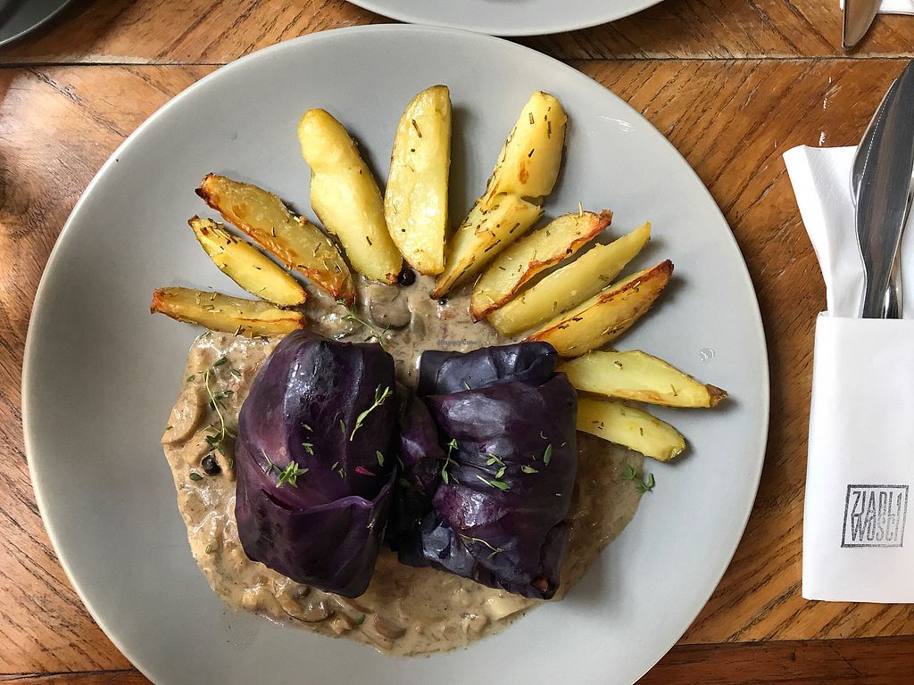 "Photo of Zjadliwości  by <a href=""/members/profile/TatyanaMatveyeva"">TatyanaMatveyeva</a> <br/>Red cabbage rolls with mushrooms and backed potatoes  <br/> October 26, 2017  - <a href='/contact/abuse/image/88480/319046'>Report</a>"
