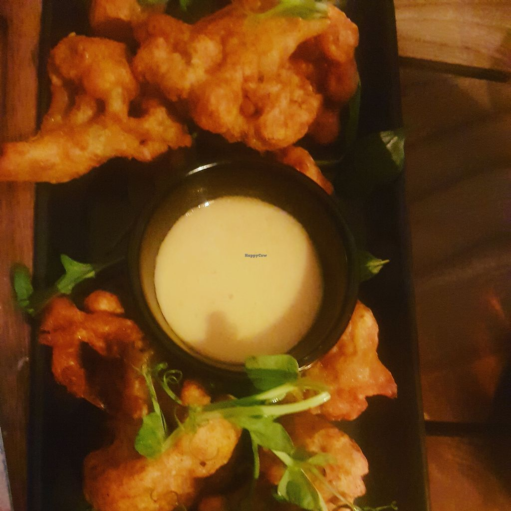 "Photo of The Botanist  by <a href=""/members/profile/Clairegr"">Clairegr</a> <br/>Cauliflower bites vegan <br/> August 25, 2017  - <a href='/contact/abuse/image/88498/296961'>Report</a>"