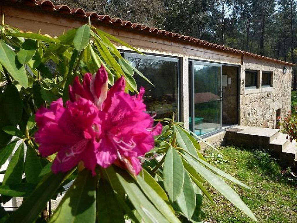 """Photo of Quinta das Aguias  by <a href=""""/members/profile/Joep%20Ingen%20Housz"""">Joep Ingen Housz</a> <br/>The old farmhouse is now a guesthouse with two suites and one bedroom, has a fully equipped kitchen and cosy living room <br/> March 17, 2017  - <a href='/contact/abuse/image/88541/237309'>Report</a>"""