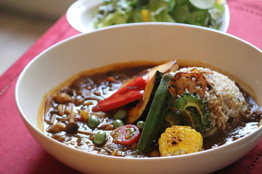 """Photo of Nobister  by <a href=""""/members/profile/Juri"""">Juri</a> <br/>vegan curry <br/> March 25, 2017  - <a href='/contact/abuse/image/88623/240855'>Report</a>"""