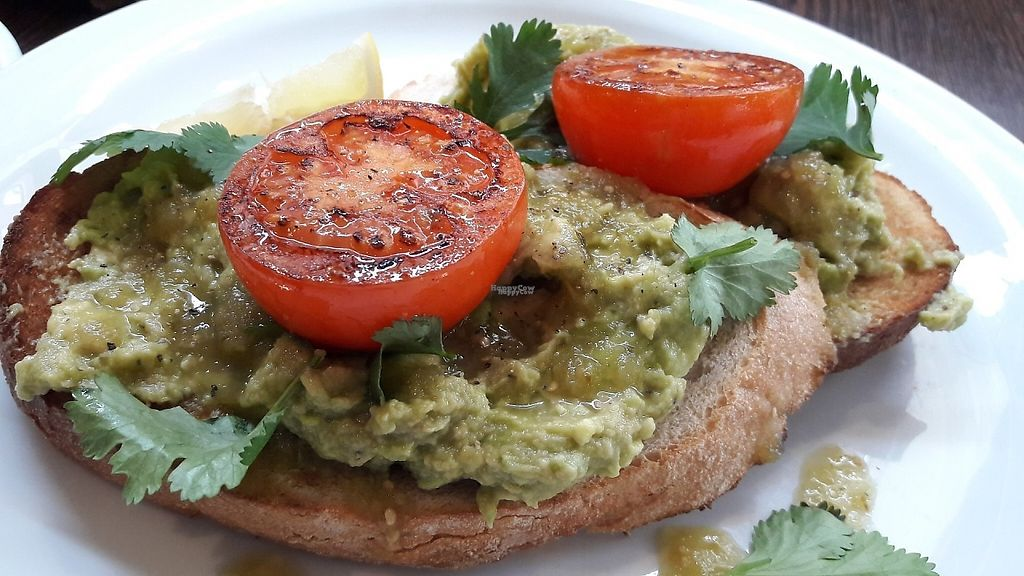 """Photo of Moose Coffee  by <a href=""""/members/profile/Veganolive1"""">Veganolive1</a> <br/>Avocado on sourdough with tomatoes, salsa verde & chilli <br/> March 14, 2017  - <a href='/contact/abuse/image/88642/236487'>Report</a>"""