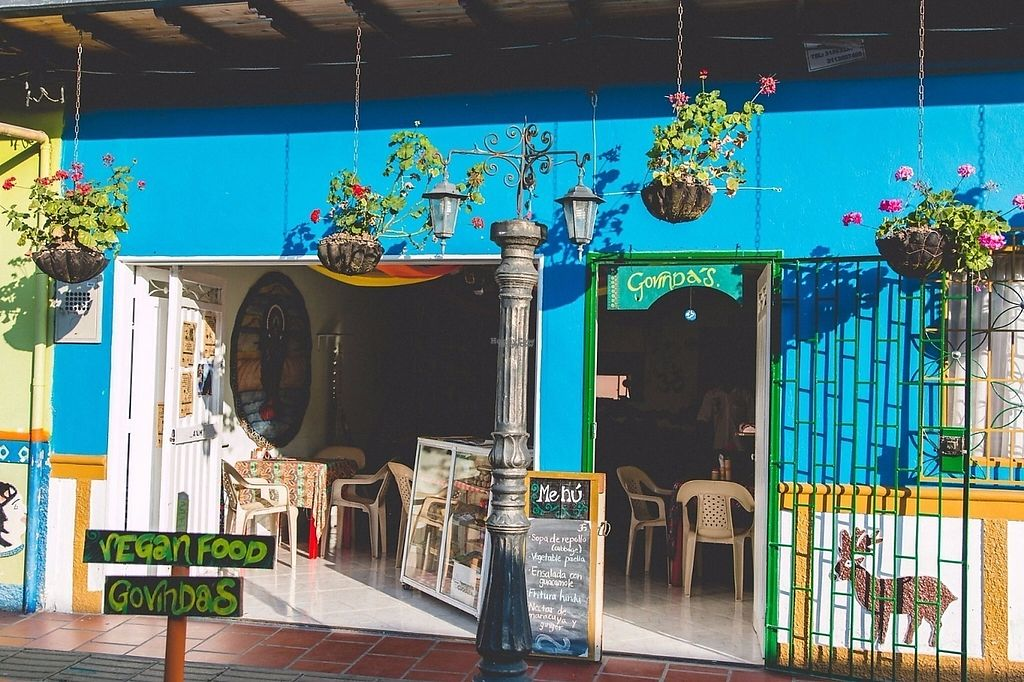 """Photo of Govinda's  by <a href=""""/members/profile/RestauranteGovindas"""">RestauranteGovindas</a> <br/>Go Veg <br/> March 16, 2017  - <a href='/contact/abuse/image/88768/237108'>Report</a>"""