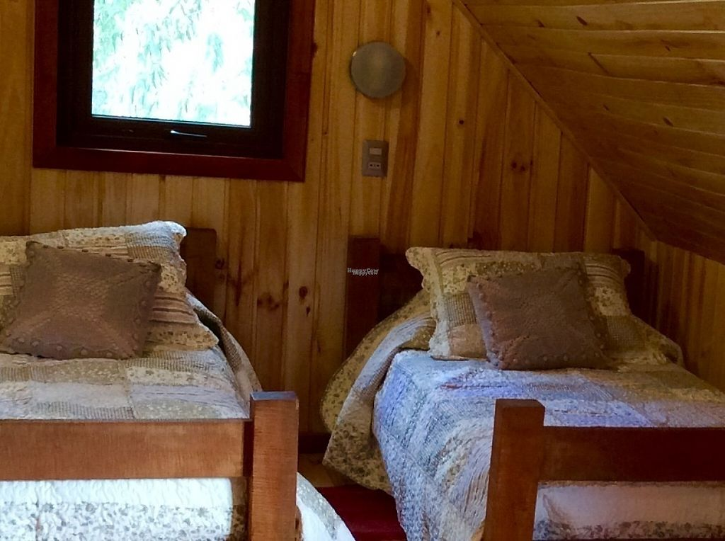 """Photo of Refugio Lodge  by <a href=""""/members/profile/KristenWhiting"""">KristenWhiting</a> <br/>Las Bosques / the brown room.  Two twin bends and a trundle bed which sleeps two more people.  Full private bath <br/> April 27, 2017  - <a href='/contact/abuse/image/88774/253185'>Report</a>"""