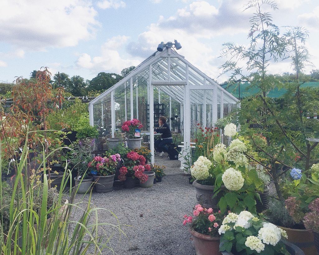 """Photo of Rosendals Tradgardskafe  by <a href=""""/members/profile/Evgenia"""">Evgenia</a> <br/>garden outside <br/> September 2, 2017  - <a href='/contact/abuse/image/88793/300059'>Report</a>"""