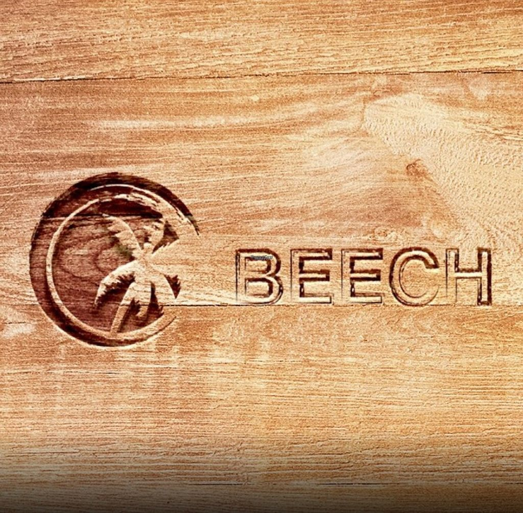 """Photo of Beech  by <a href=""""/members/profile/Kris10mo"""">Kris10mo</a> <br/>beech <br/> March 18, 2017  - <a href='/contact/abuse/image/88834/238012'>Report</a>"""