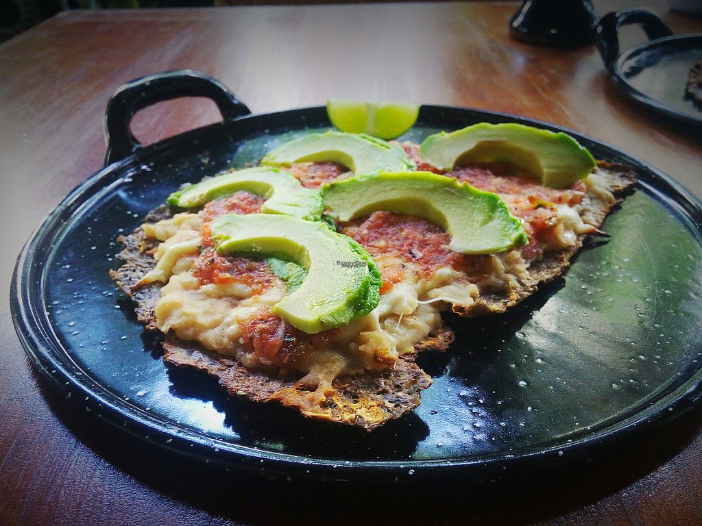 """Photo of Tlaco  by <a href=""""/members/profile/Tlaco"""">Tlaco</a> <br/>Tlayuda Mexikah con alubias, salsa tomate y aguacate <br/> March 18, 2017  - <a href='/contact/abuse/image/88871/238101'>Report</a>"""