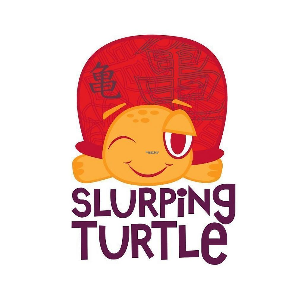 """Photo of Slurping Turtle  by <a href=""""/members/profile/community5"""">community5</a> <br/>Slurping Turtle <br/> March 18, 2017  - <a href='/contact/abuse/image/88876/238115'>Report</a>"""