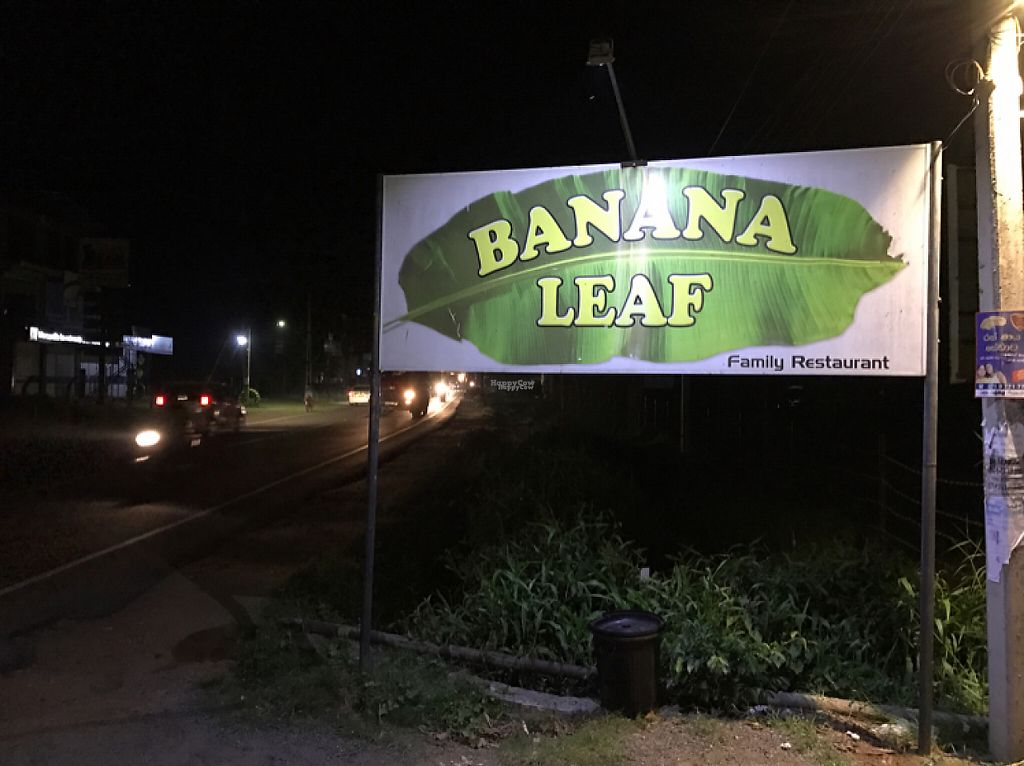 "Photo of Banana Leaf  by <a href=""/members/profile/PetrFrolich"">PetrFrolich</a> <br/>Can't miss it <br/> March 20, 2017  - <a href='/contact/abuse/image/88891/238658'>Report</a>"