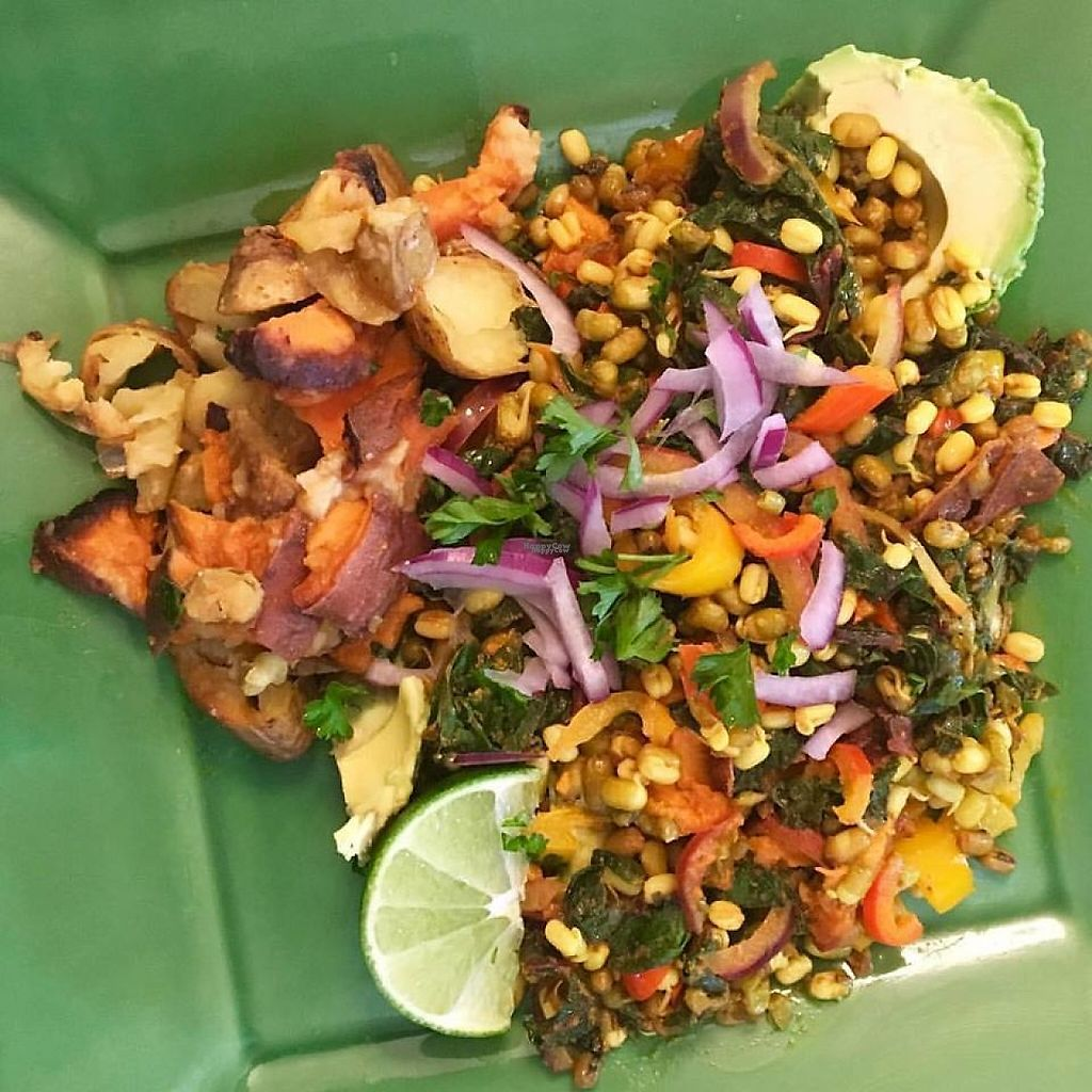 """Photo of Juicy Yoga Cafe  by <a href=""""/members/profile/community"""">community</a> <br/>salad <br/> April 2, 2017  - <a href='/contact/abuse/image/88950/244215'>Report</a>"""