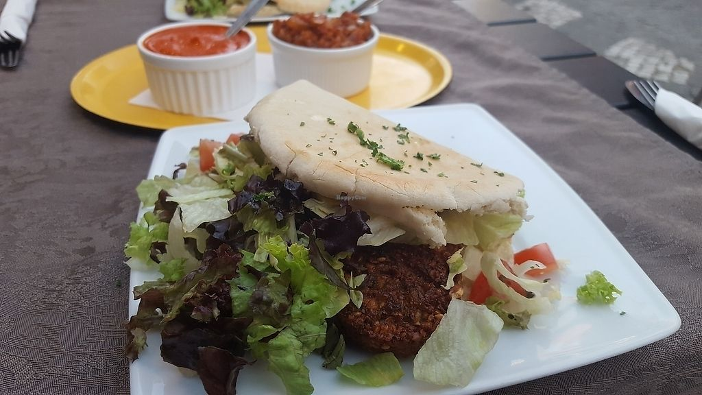 "Photo of Pittahuis  by <a href=""/members/profile/AinsleePatton"">AinsleePatton</a> <br/>Large pita falafel meal <br/> June 17, 2017  - <a href='/contact/abuse/image/88981/270140'>Report</a>"