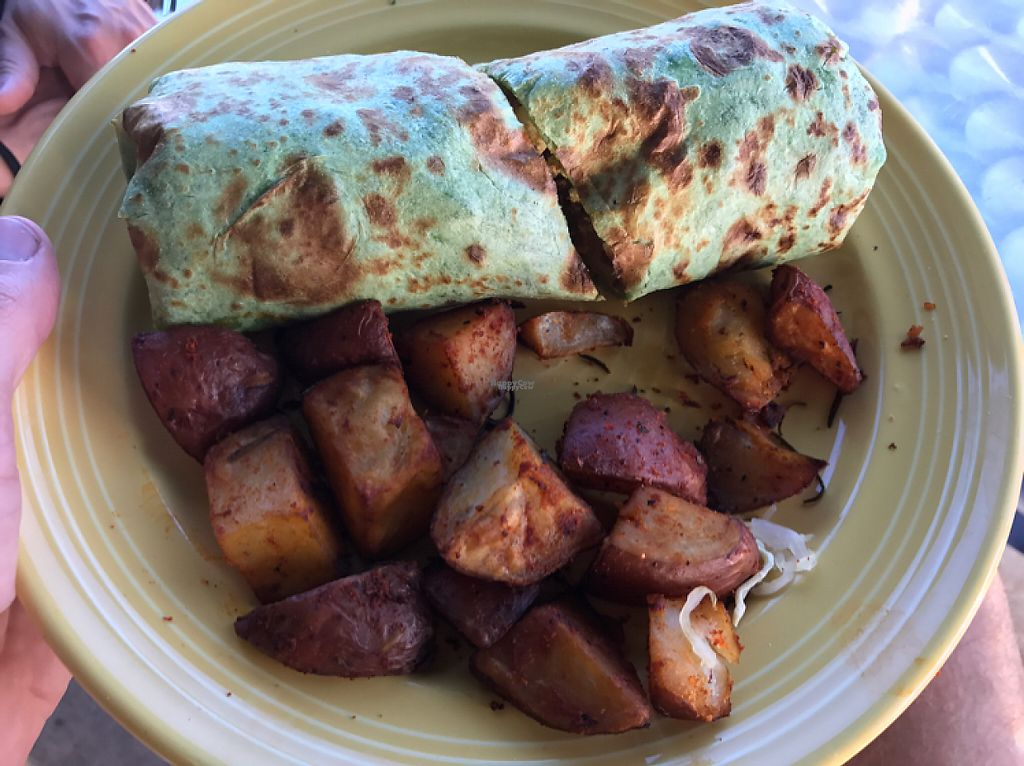 "Photo of The Grain Cafe  by <a href=""/members/profile/FatTonyBMX"">FatTonyBMX</a> <br/>Breakfast burrito with potatoes. Delicious! <br/> April 23, 2017  - <a href='/contact/abuse/image/89010/251451'>Report</a>"