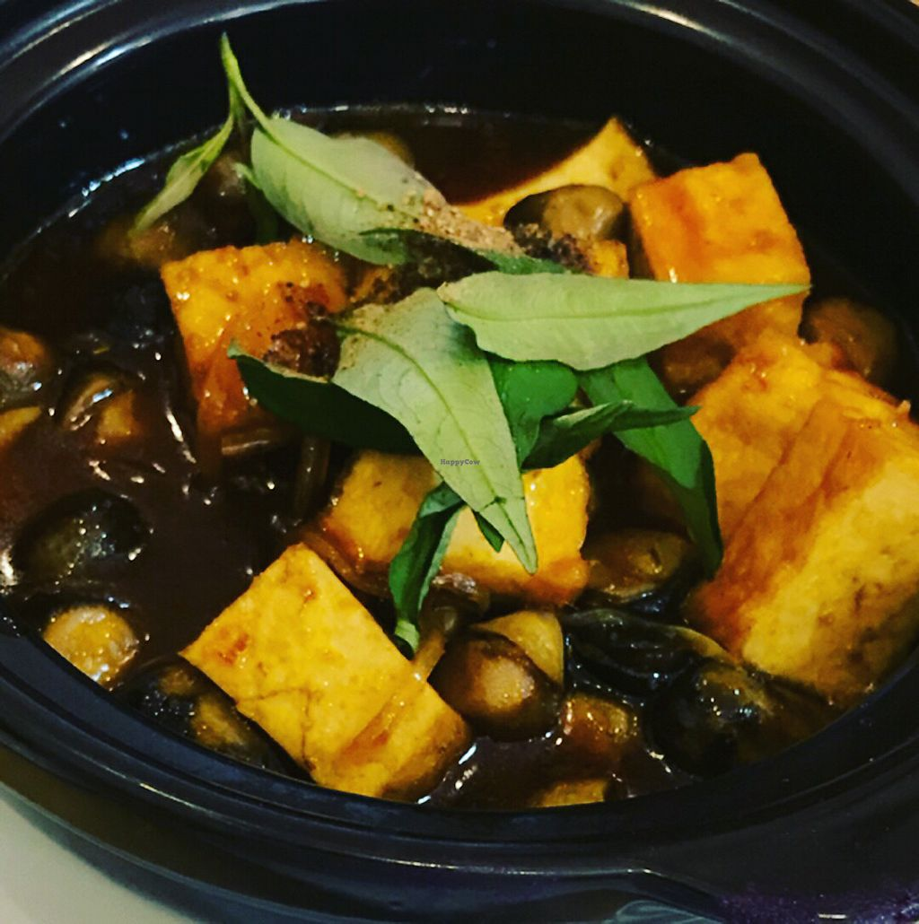 """Photo of Loving Hut Thai Duong  by <a href=""""/members/profile/TheVeganOne"""">TheVeganOne</a> <br/>Tofu and mushroom hot pot  <br/> April 3, 2018  - <a href='/contact/abuse/image/89077/380302'>Report</a>"""