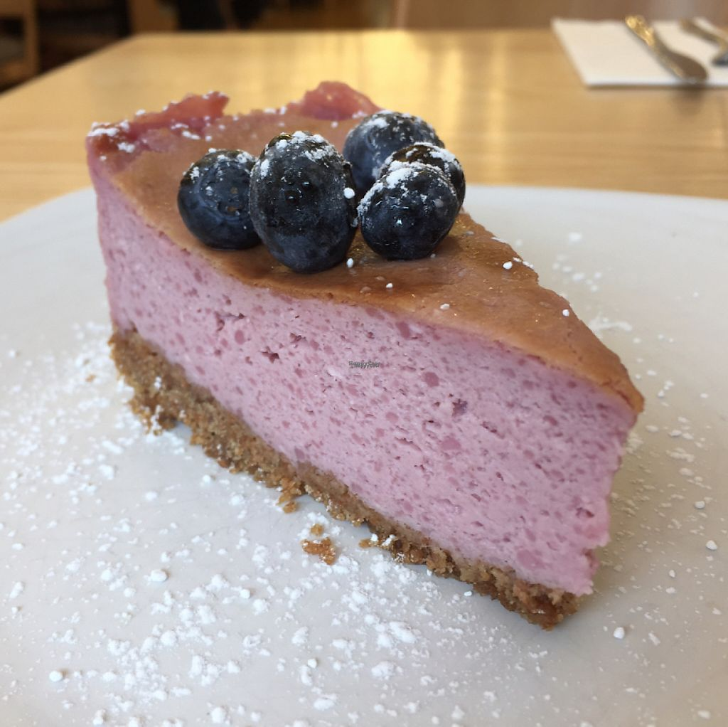 """Photo of Our Kitchen   by <a href=""""/members/profile/Bea_lc"""">Bea_lc</a> <br/>blueberry vegan cheesecake  <br/> April 6, 2017  - <a href='/contact/abuse/image/89167/245216'>Report</a>"""
