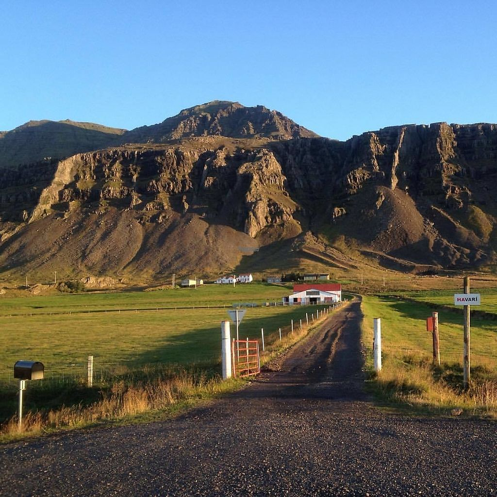 """Photo of Kaffi Havari  by <a href=""""/members/profile/Havari"""">Havari</a> <br/>The Farm, Karlsstadir, by route one, east of Iceland. Kaffi Havarí is in a converted barn right behind the white and read sheep house.  <br/> March 25, 2017  - <a href='/contact/abuse/image/89188/240575'>Report</a>"""