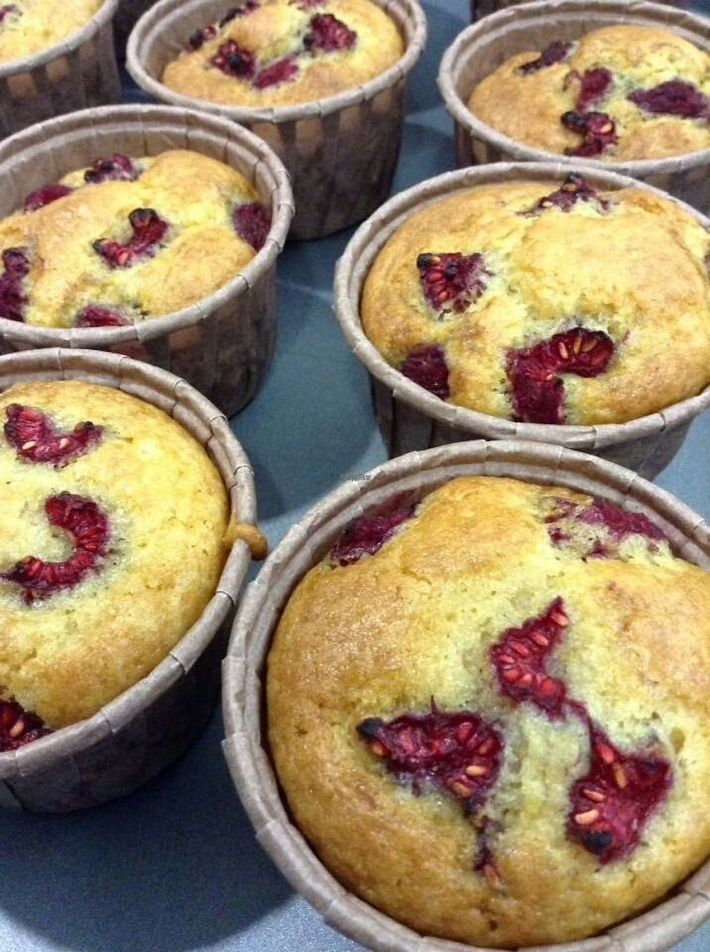 """Photo of Alice in Wonder Pie  by <a href=""""/members/profile/Ceresmar"""">Ceresmar</a> <br/>vanilla and raspberry muffins (v)  <br/> April 4, 2017  - <a href='/contact/abuse/image/89279/244693'>Report</a>"""