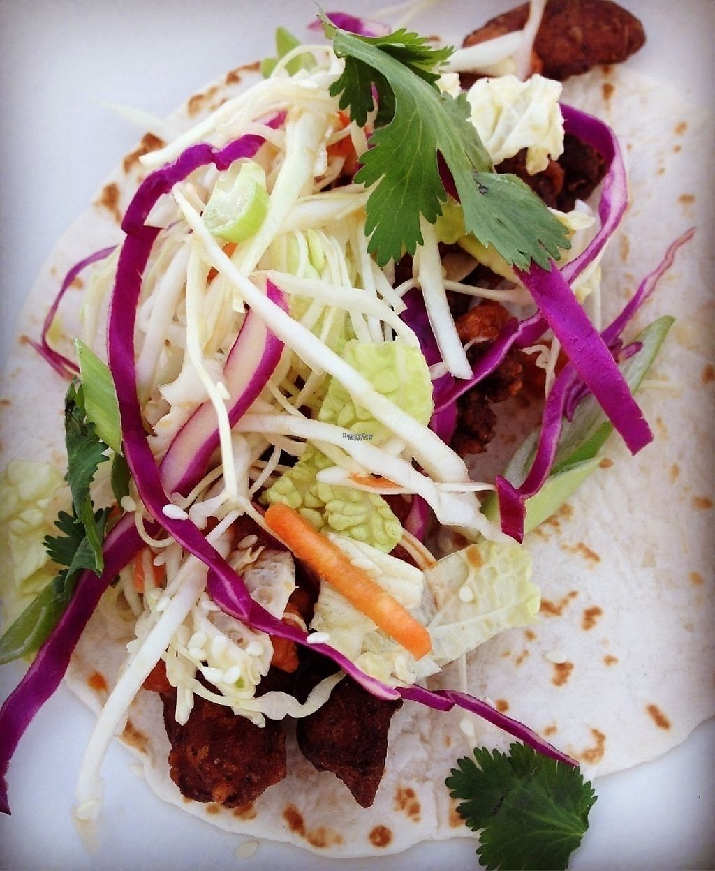 """Photo of The Great Y'all - Food Truck  by <a href=""""/members/profile/Bethdavidson"""">Bethdavidson</a> <br/>Manchurian soy curl taco <br/> March 28, 2017  - <a href='/contact/abuse/image/89363/241967'>Report</a>"""