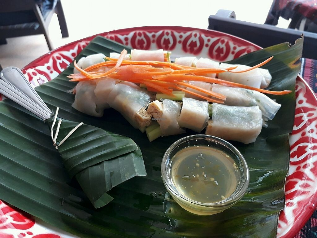 """Photo of Sa Bai Jai  by <a href=""""/members/profile/LilacHippy"""">LilacHippy</a> <br/>Tofu raw spring rolls <br/> September 24, 2017  - <a href='/contact/abuse/image/89390/307676'>Report</a>"""