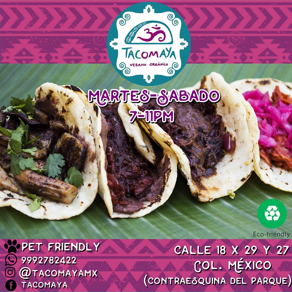 """Photo of Tacomaya  by <a href=""""/members/profile/itsminifer"""">itsminifer</a> <br/>Tue-Sat 7-11pm <br/> March 31, 2017  - <a href='/contact/abuse/image/89546/242873'>Report</a>"""