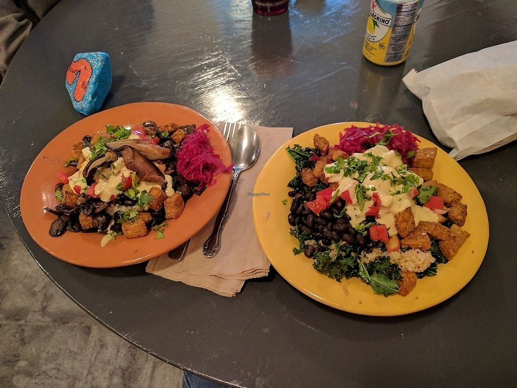 "Photo of Wild Island Juice Bagels & Bowls  by <a href=""/members/profile/lilfriend"">lilfriend</a> <br/>Mushroom bowl and kale bowl <br/> May 24, 2017  - <a href='/contact/abuse/image/89600/261884'>Report</a>"