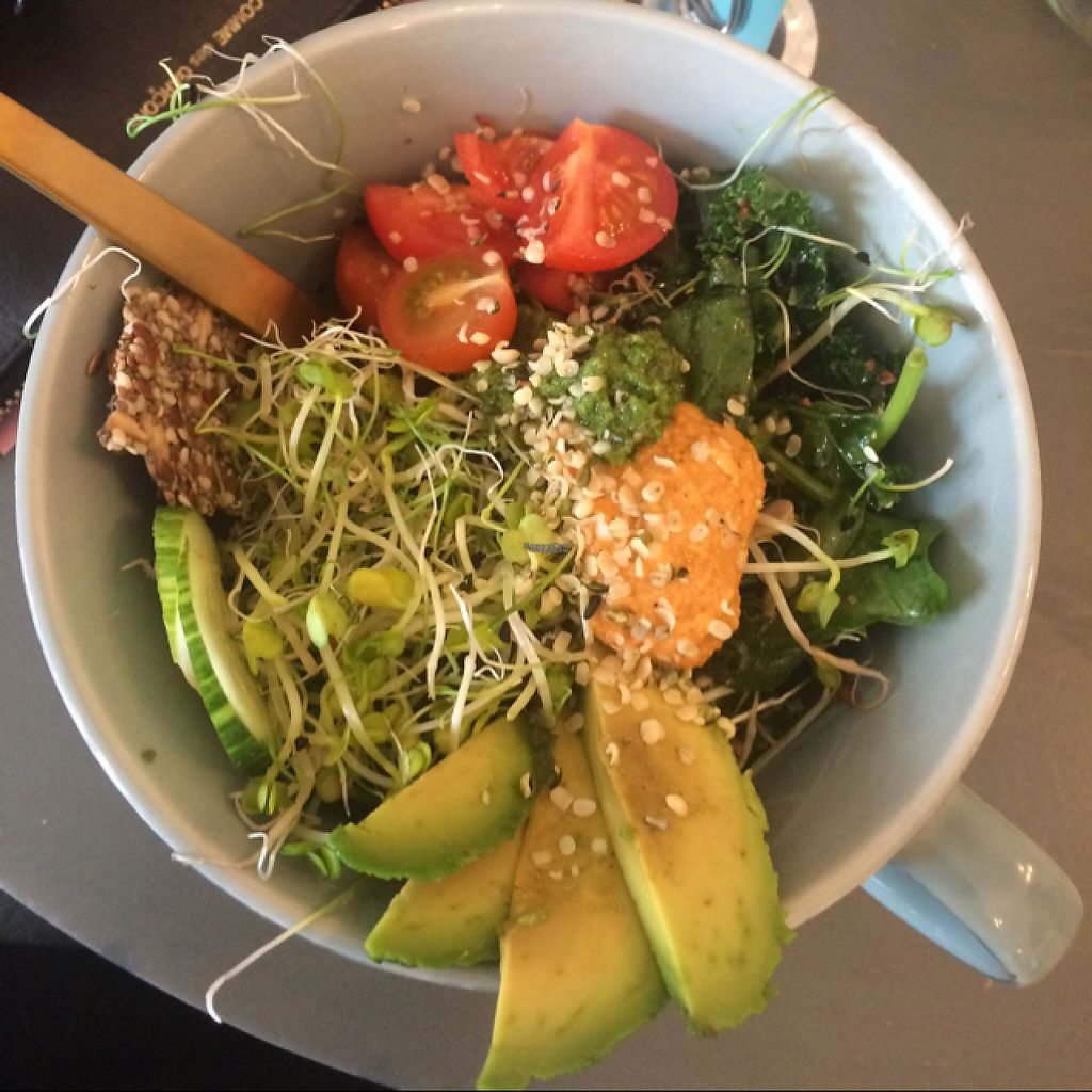 """Photo of Oslo Raw  by <a href=""""/members/profile/CharlieWilliams"""">CharlieWilliams</a> <br/>vegan salad  <br/> April 3, 2017  - <a href='/contact/abuse/image/89657/244411'>Report</a>"""