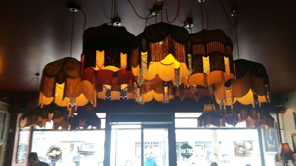 """Photo of Nostrano Lounge  by <a href=""""/members/profile/jollypig"""">jollypig</a> <br/>Funky lampshades <br/> May 7, 2017  - <a href='/contact/abuse/image/89692/256849'>Report</a>"""