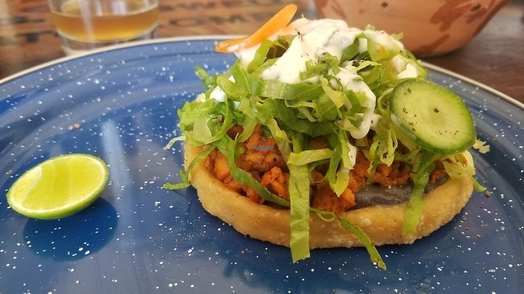 """Photo of Inspiracion 9  by <a href=""""/members/profile/kenvegan"""">kenvegan</a> <br/>Torta Ahogada (drenched in sauce) <br/> April 10, 2017  - <a href='/contact/abuse/image/89812/246541'>Report</a>"""