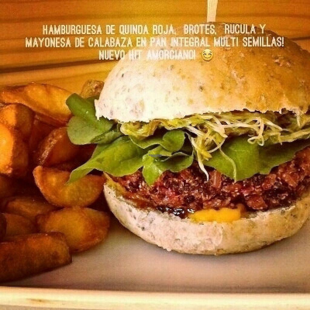 "Photo of Amorcito  by <a href=""/members/profile/MeluMelona"">MeluMelona</a> <br/>Hamburguesa vegana de quinoa roja <br/> April 6, 2017  - <a href='/contact/abuse/image/89924/245201'>Report</a>"