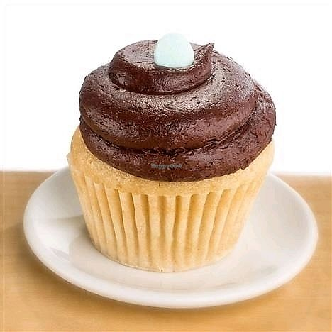 """Photo of Molly's Cupcakes  by <a href=""""/members/profile/MelodyVeganJoy"""">MelodyVeganJoy</a> <br/>vanilla cake with chocolate frosting <br/> April 4, 2018  - <a href='/contact/abuse/image/89965/380433'>Report</a>"""