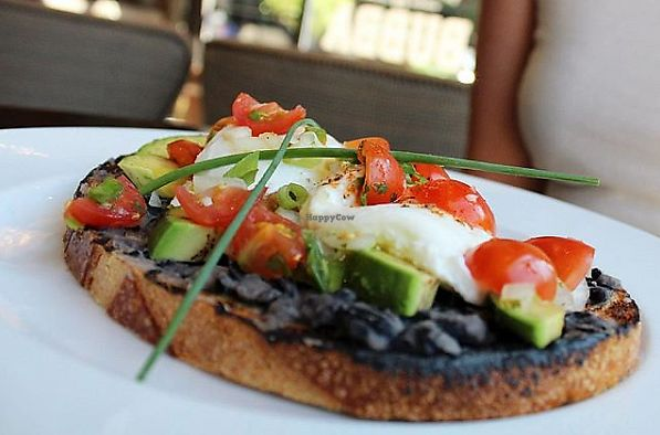 """Photo of Bubba  by <a href=""""/members/profile/MelodyVeganJoy"""">MelodyVeganJoy</a> <br/>black bean avocado toast with poached egg <br/> April 4, 2018  - <a href='/contact/abuse/image/89978/380845'>Report</a>"""