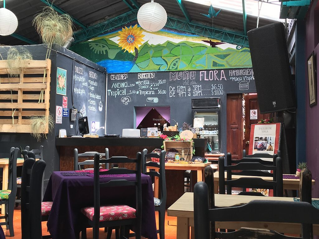 """Photo of Flora  by <a href=""""/members/profile/peas-full"""">peas-full</a> <br/>the restaurant  <br/> October 1, 2017  - <a href='/contact/abuse/image/90014/310380'>Report</a>"""