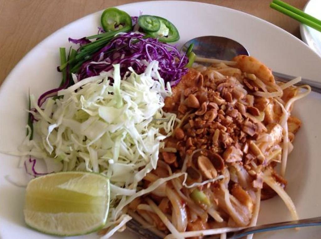 """Photo of Happy Veggie  by <a href=""""/members/profile/Linvg"""">Linvg</a> <br/>pad Thai, oh my <br/> September 6, 2014  - <a href='/contact/abuse/image/9009/194297'>Report</a>"""