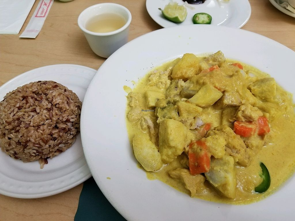 """Photo of Happy Veggie  by <a href=""""/members/profile/BillLee"""">BillLee</a> <br/>soy chicken curry with brown rice <br/> January 8, 2018  - <a href='/contact/abuse/image/9009/344193'>Report</a>"""