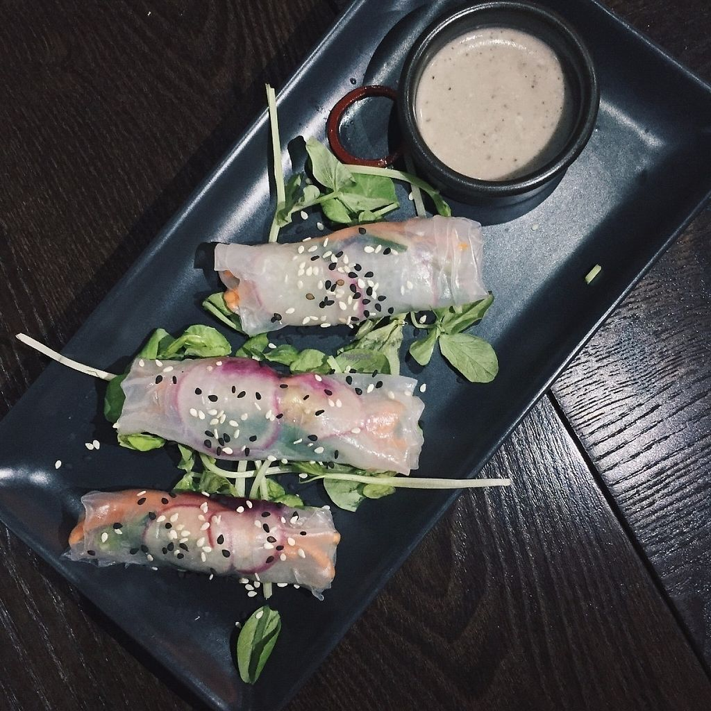 "Photo of Dejavu  by <a href=""/members/profile/caitjoy"">caitjoy</a> <br/>Veggie Rice Paper Rolls <br/> April 10, 2017  - <a href='/contact/abuse/image/90111/246620'>Report</a>"