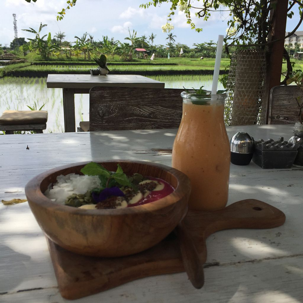 """Photo of Nook  by <a href=""""/members/profile/Kels415"""">Kels415</a> <br/>dragon fruit smoothie bowl and a banana-papaya-mango smoothie for breakfast.  <br/> April 14, 2017  - <a href='/contact/abuse/image/90147/247742'>Report</a>"""