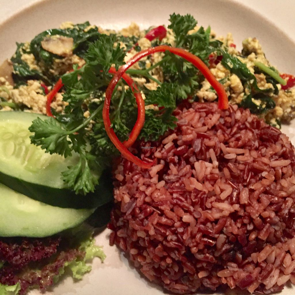 """Photo of Nook  by <a href=""""/members/profile/Eefie"""">Eefie</a> <br/>yummie scrambled tofu & kale <br/> May 28, 2017  - <a href='/contact/abuse/image/90147/263422'>Report</a>"""