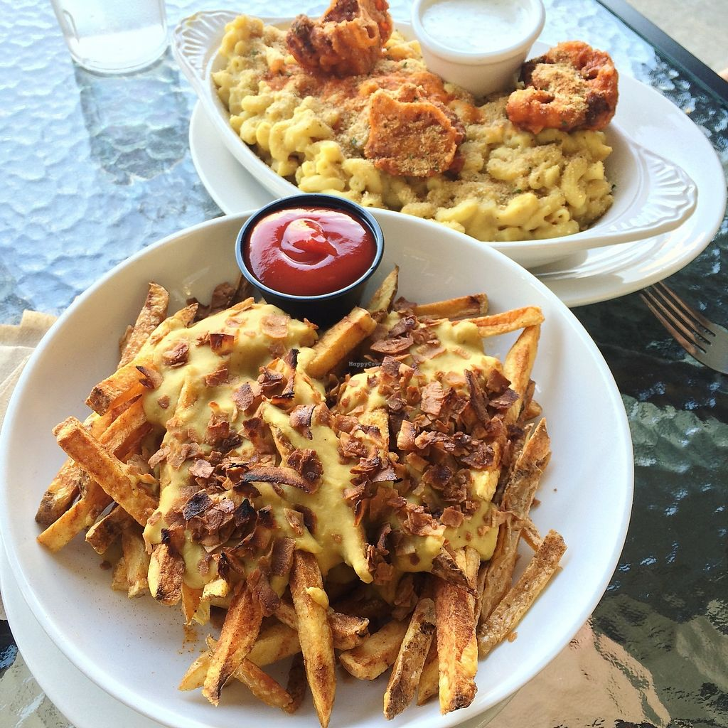 """Photo of The Mac House  by <a href=""""/members/profile/The%20Vegan%20Chemist"""">The Vegan Chemist</a> <br/>Vegan buffalo cauliflower mac and cheese with vegan ranch along side vegan cheese fries with coconut bacon and ketchup. June 2017 <br/> July 9, 2017  - <a href='/contact/abuse/image/90211/278444'>Report</a>"""