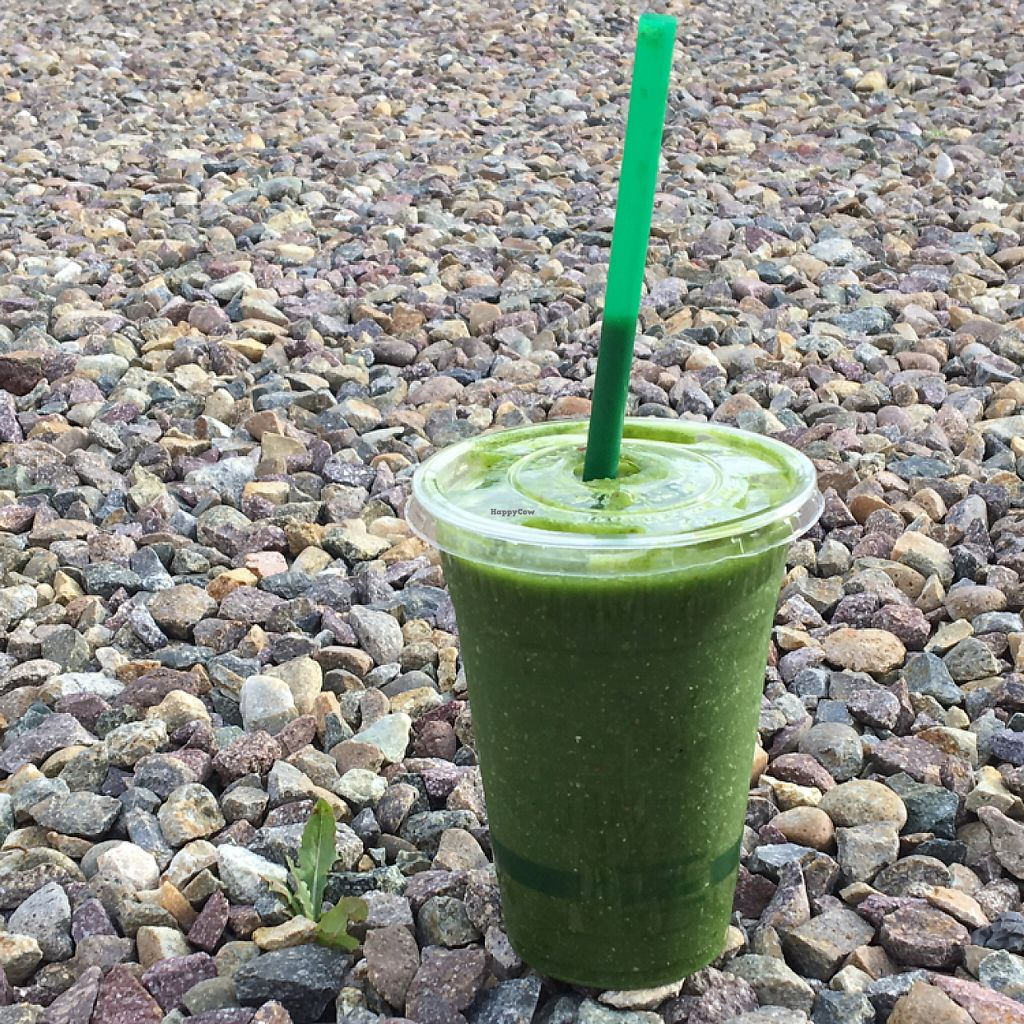 """Photo of Greens Please  by <a href=""""/members/profile/AriTravels"""">AriTravels</a> <br/>green smoothie  <br/> May 9, 2017  - <a href='/contact/abuse/image/90224/257474'>Report</a>"""