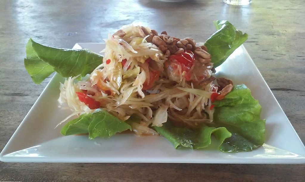"""Photo of The Garden of Nang  by <a href=""""/members/profile/Astravegan"""">Astravegan</a> <br/>Vegan Papayasalad <br/> April 24, 2017  - <a href='/contact/abuse/image/90402/251827'>Report</a>"""