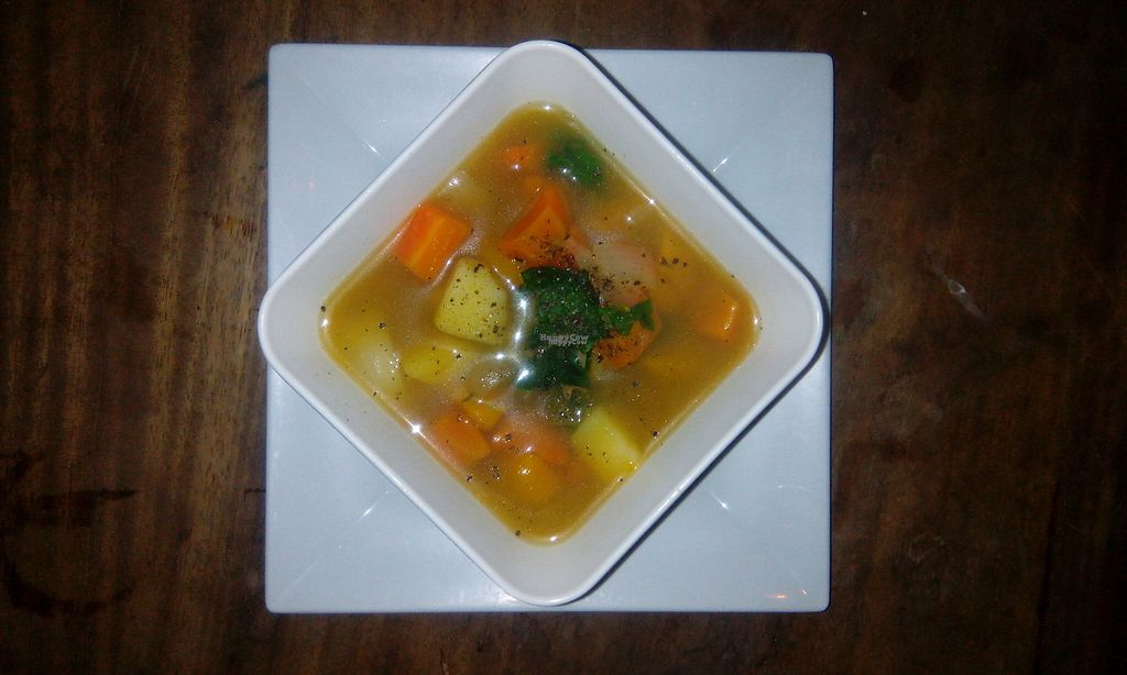 """Photo of The Garden of Nang  by <a href=""""/members/profile/Astravegan"""">Astravegan</a> <br/>Vegetable soup <br/> April 26, 2017  - <a href='/contact/abuse/image/90402/252685'>Report</a>"""
