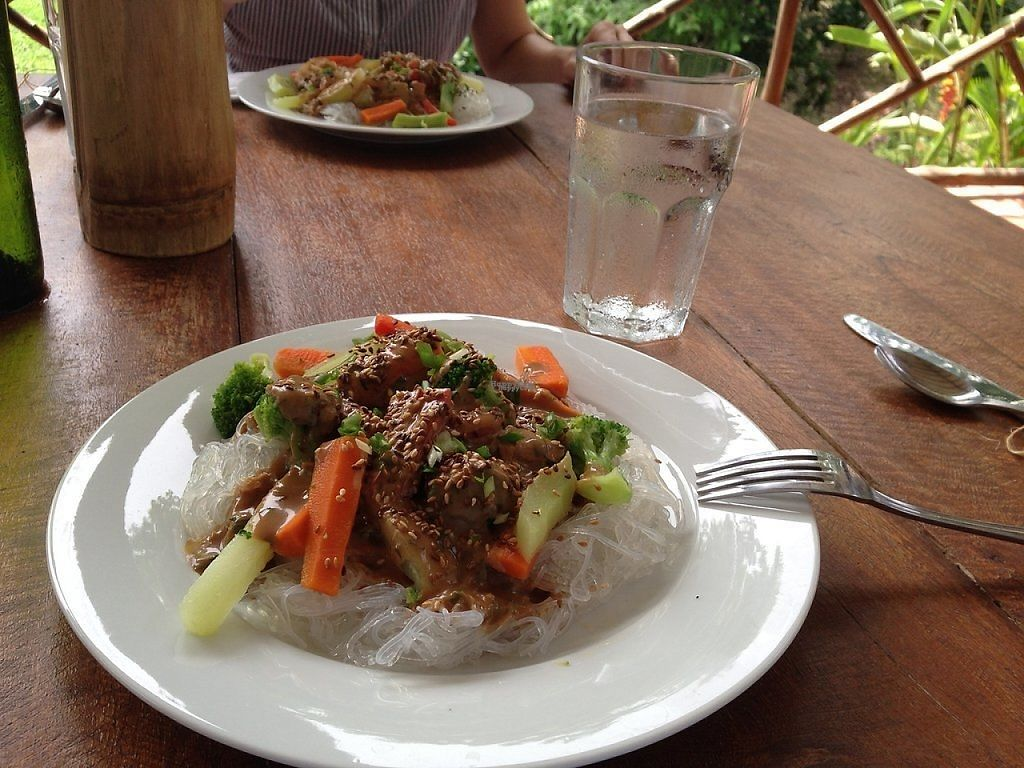 """Photo of Istmo Yoga and Adventure Retreat  by <a href=""""/members/profile/VegPanama"""">VegPanama</a> <br/>Thai Peanut Sauce over Vegetables and Noodles <br/> April 17, 2017  - <a href='/contact/abuse/image/90513/249165'>Report</a>"""
