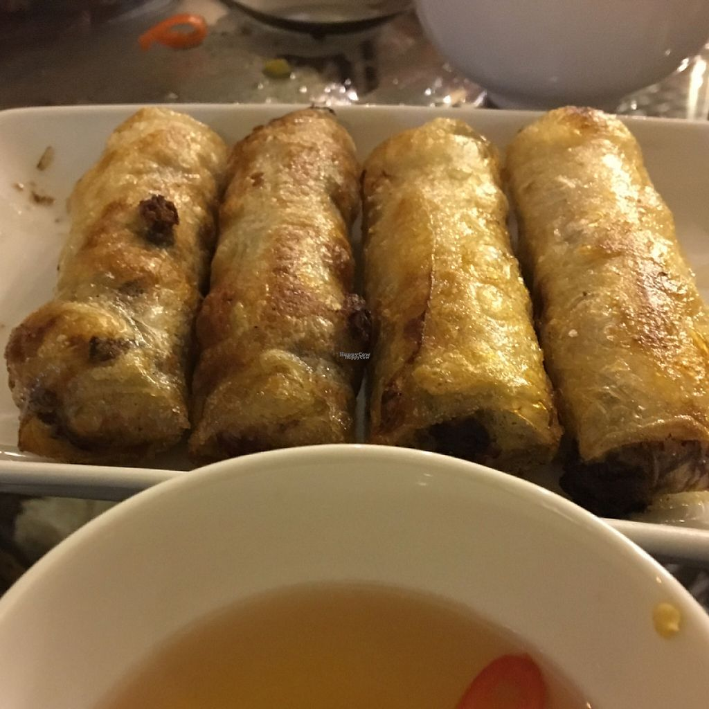 "Photo of Sesame  by <a href=""/members/profile/sudielasudes"">sudielasudes</a> <br/>Fried Spring Rolls <br/> April 19, 2017  - <a href='/contact/abuse/image/90532/249958'>Report</a>"