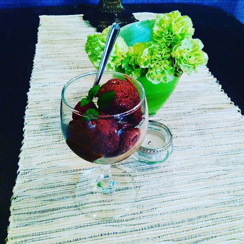 "Photo of Stammen Cafe og Bar  by <a href=""/members/profile/Stammen"">Stammen</a> <br/>At Stammen you can get their café-made healthy vegan ice cream made of cashew nuts and a variety of fruit and berries <br/> April 16, 2017  - <a href='/contact/abuse/image/90547/249131'>Report</a>"