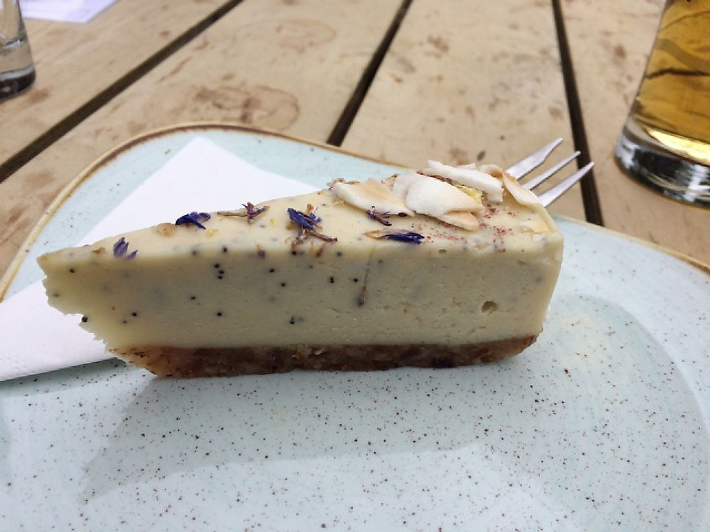 "Photo of Vondelpark3  by <a href=""/members/profile/bikerdyke"">bikerdyke</a> <br/>tiny but delicious raw lemon vegan cheesecake  <br/> May 19, 2017  - <a href='/contact/abuse/image/90574/260433'>Report</a>"