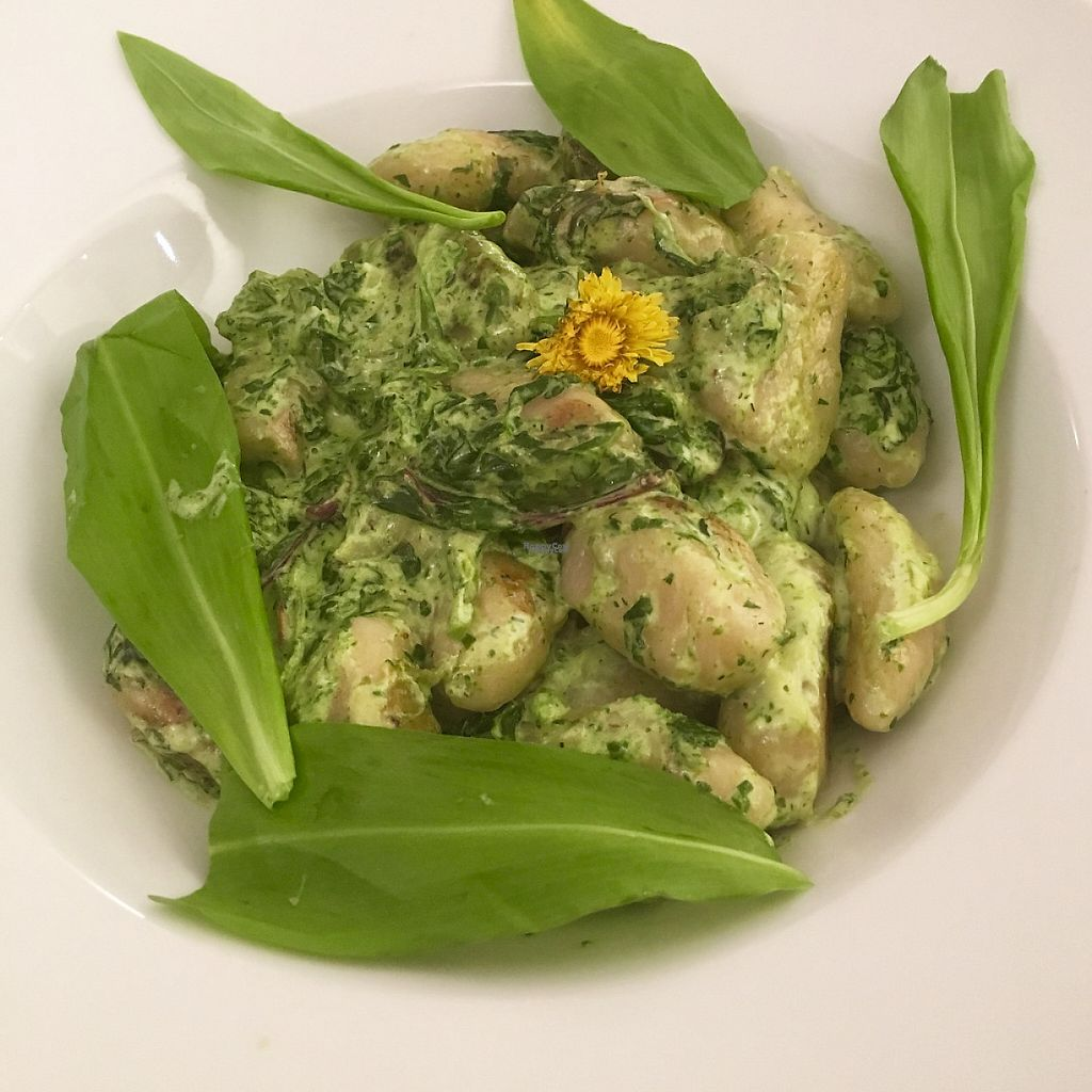 "Photo of Stiftskeller  by <a href=""/members/profile/crazyliljess"">crazyliljess</a> <br/>wild garlic cream gnocchi <br/> April 18, 2017  - <a href='/contact/abuse/image/90599/249564'>Report</a>"