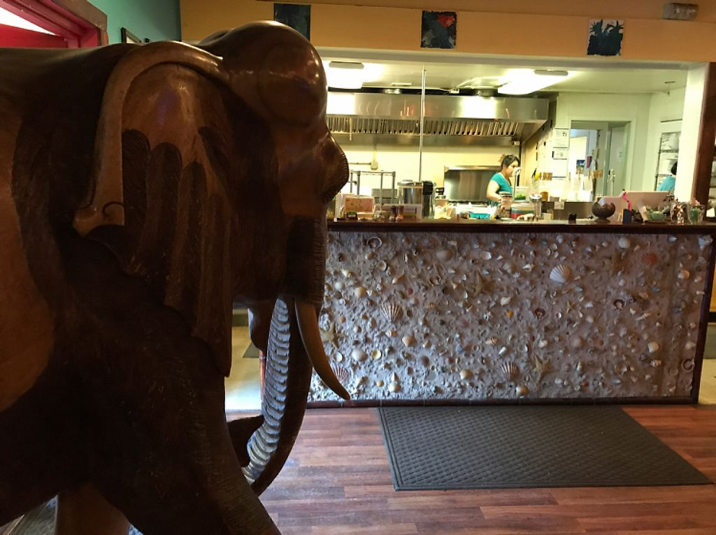 "Photo of Woody's Thai Kitchen  by <a href=""/members/profile/Sarah%20P"">Sarah P</a> <br/>open kitchen <br/> April 21, 2017  - <a href='/contact/abuse/image/90688/250645'>Report</a>"