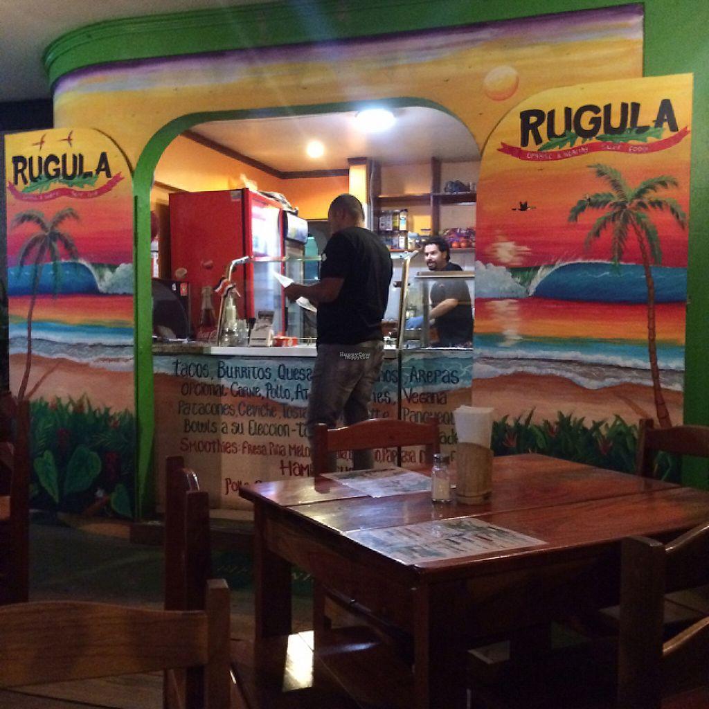 "Photo of Rugula  by <a href=""/members/profile/KatieBush"">KatieBush</a> <br/>rugula at night <br/> April 22, 2017  - <a href='/contact/abuse/image/90689/250960'>Report</a>"