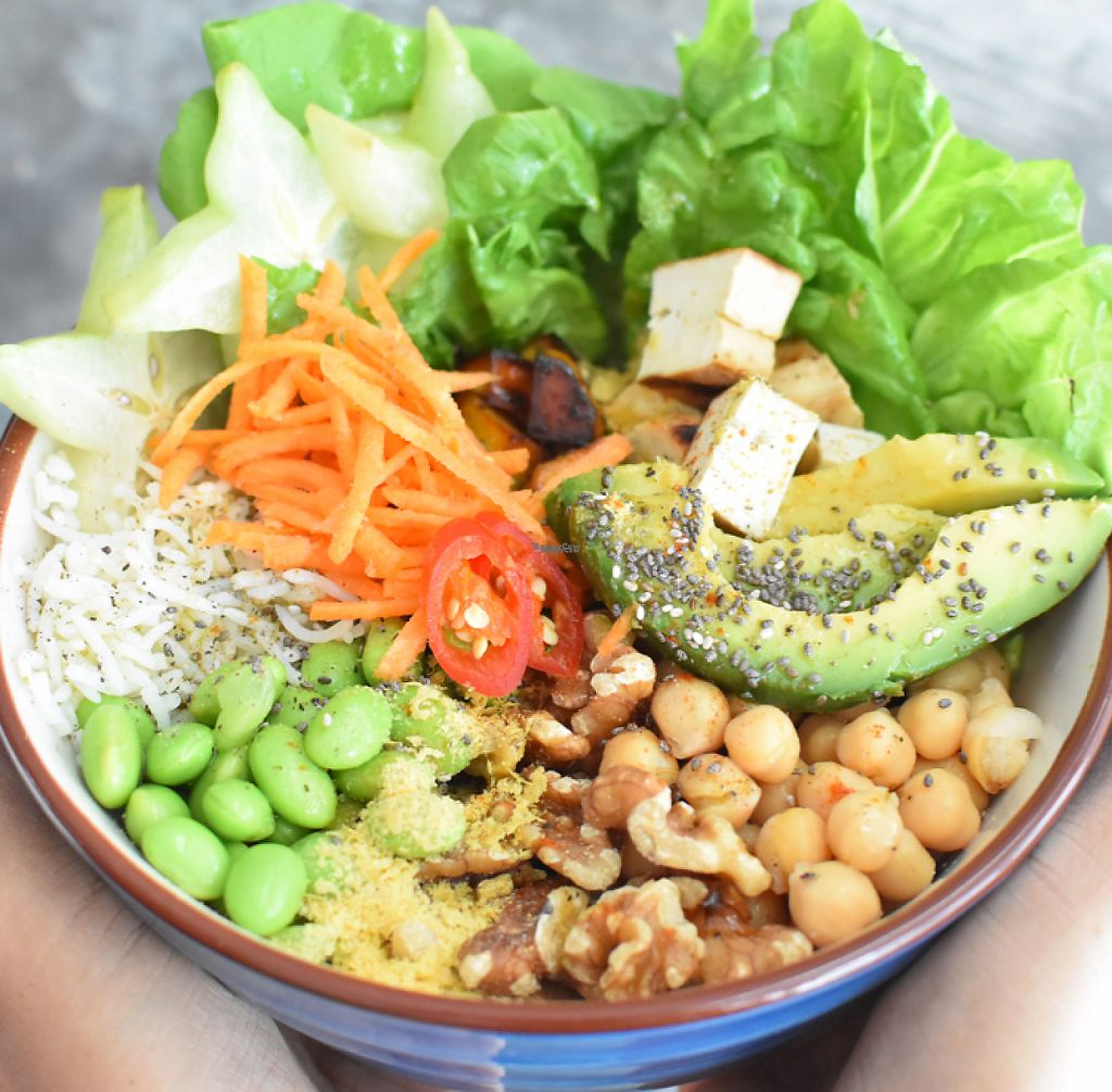 """Photo of Sala  by <a href=""""/members/profile/Spaghetti_monster"""">Spaghetti_monster</a> <br/>nourish bowl <br/> April 24, 2017  - <a href='/contact/abuse/image/90976/251744'>Report</a>"""